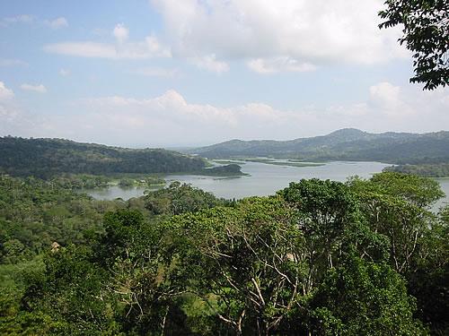 Fantastische Aussicht im Urwald von Panama