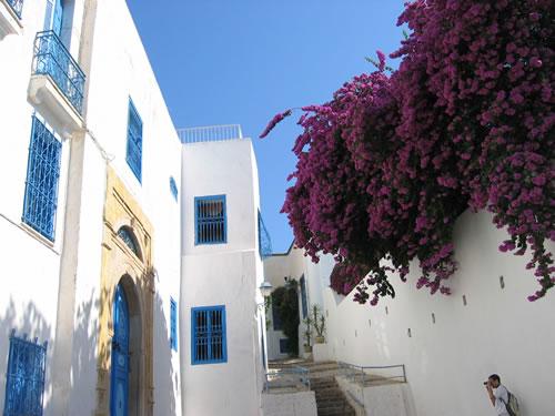 Sidi Bou Saïd ist ein wirklich malerisches Örtchen