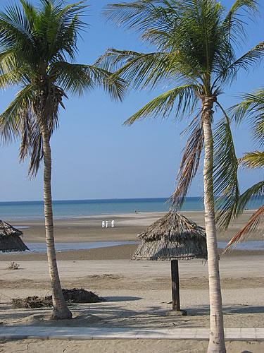Traumhafter und menschenleerer Strand in Muscat