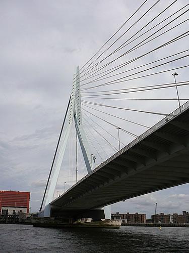 Das Wahrzeichen Rotterdams ist die Erasmusbrücke