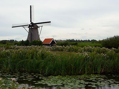Kinderdijk ist bekannt für seine typisch holländischen Mühlen