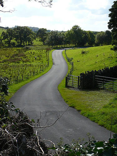 Straße im Westen Irlands