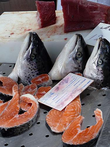 Fangfrischen Fisch auf dem Wochenmarkt in Loulé