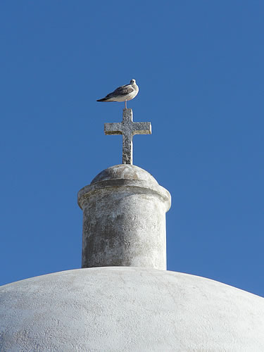 Möwe auf dem Dach der kleinen Kapelle im Fortaleza de Sagres