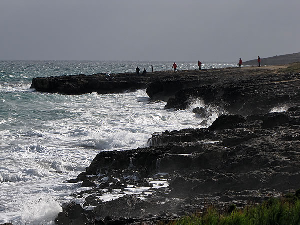 Die unter Naturschutz gestellte Halbinsel Punta de Amer