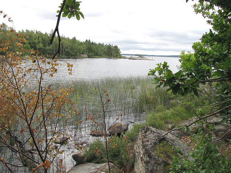Ausblick auf den Åsnen-See